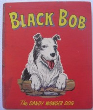 The Black Bob Book  #1965