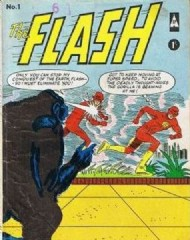 The Flash (2nd Series) 1987 - 2009 #1