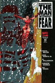 Daredevil: the Man Without Fear 1993 - 1994 #2