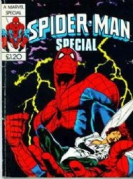 Spider-Man Winter Special  #14