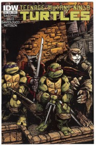 Teenage Mutant Ninja Turtles (IDW) 2011- #24