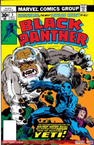 The Black Panther (Series 1) 1977 - 1979 #4